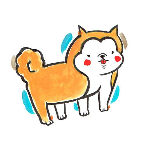 柴犬 Shibaのイラスト
